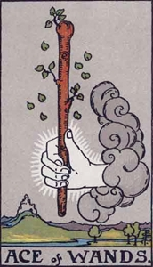 22. Ace of Wands
