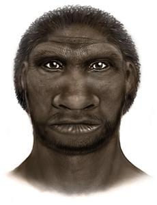 Homo Cepranensis
